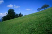 landscapes paysage provenant de Photo paysage