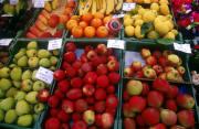 fruits paysage provenant de Photo fruits