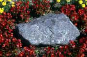 stones paysage provenant de Photo fleurs