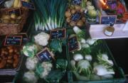 vegetable paysage provenant de Photo végétaux